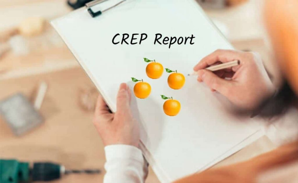 Crep report car seat safety